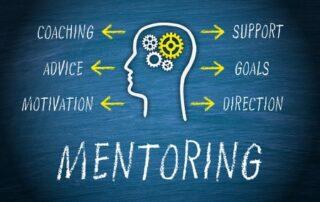 supply chain mentorship program